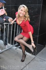 Christie Brinkley in red dress and stockings