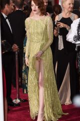 Emma Stone flashing crotch at the Oscars