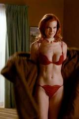 Marcia Cross is a desperate housewife