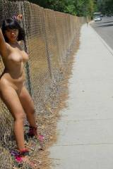 Bound to a fence
