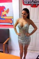 Ninel Conde - Silver sequin minidress