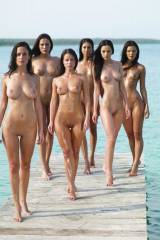 A Bevy of Brunettes